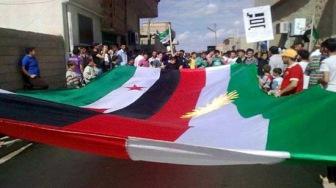 Курды в Сирии: кто и за что борется?